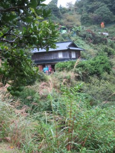 Nakamura's house above Kamikatsu